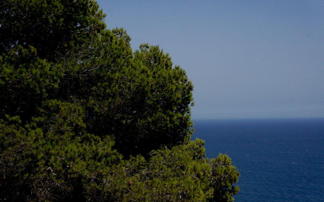 La costa del sol